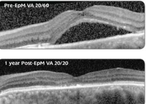 scans-1-year 1